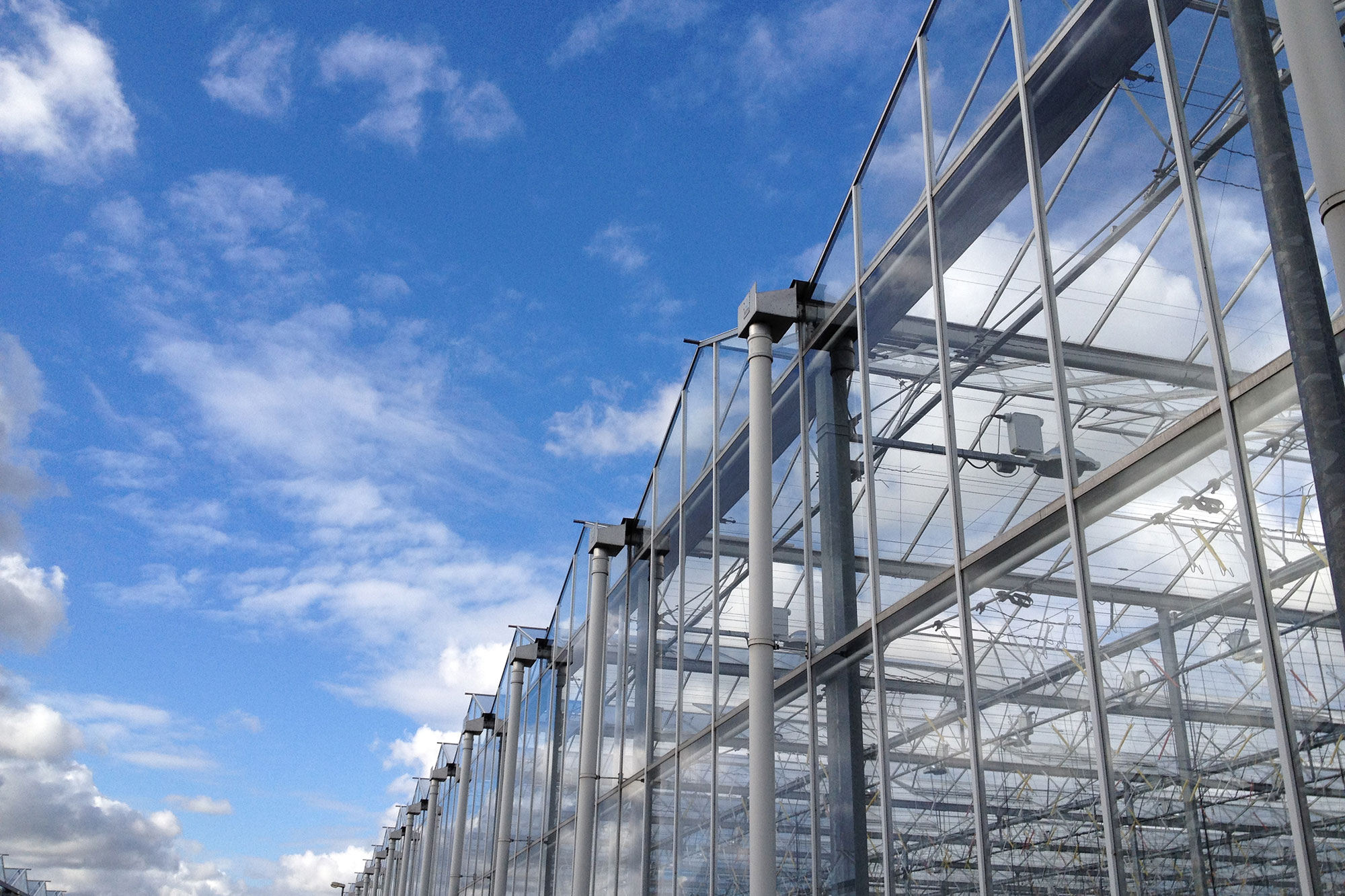 Glastuinbouwgebied & Business Park Siberië